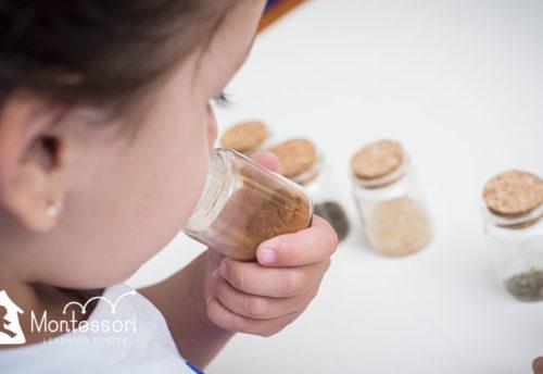Montessori Costa Rica - Curridabat